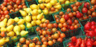 la tomate très consommée en France