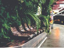 station-metro-vegetalisee-franchementbien