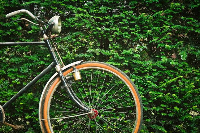 le vélo : une invention française